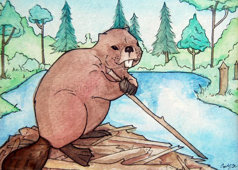 Watercolor Painting - Beaver